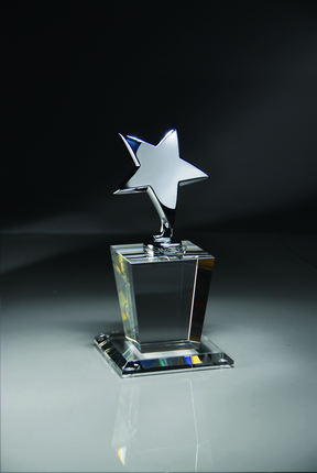 8 Inch Silver Star on Optical Crystal Base Award