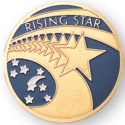 "2 Inch Etched Enameled ""Rising Star"" Medallion Insert Disc"