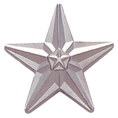 3/4 Inch Silver Star Polished Lapel Pin