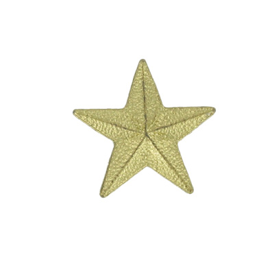 7/8 Inch Gold Star Lapel Pin