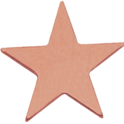 3/4 Inch Bronze Polished Star Lapel Pin