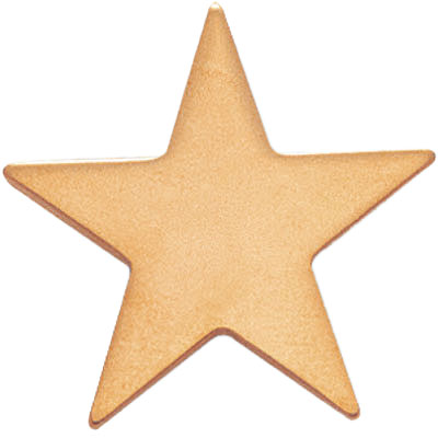 1 Inch Gold Plain and Flat Star Lapel Pin