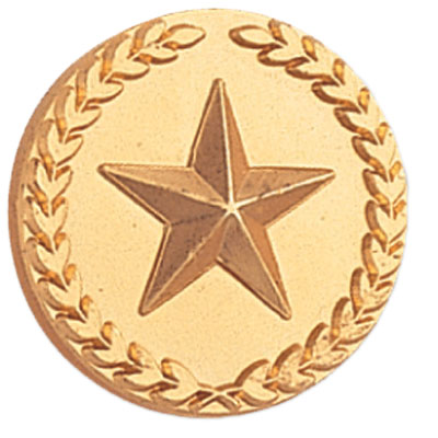 7/8 Inch Gold Star with Wreath Lapel Pin