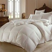 Downright Himalaya Polish Summer Comforter