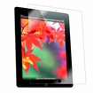 Apple iPad 4 (iPad 3 Compatible) LIQuid Shield Screen Protector