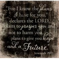 For I Know The Plans Pallet Decor - Christian Home & Wall Decor