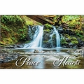 Let The Peace Of Christ - Christian Home & Wall Decor
