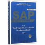 SAP Web Dynpro For JAVA开发技术详解