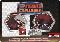 NIGHT HUNTER TRAINING KIT Online Pokemon Black & White Deck Code