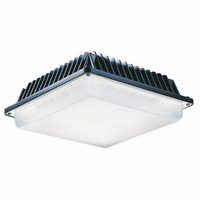 Canopy & Flush Mount Overhang Lights