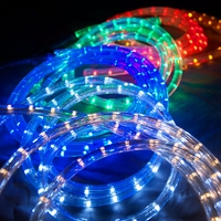 LED Rope Lights by Color