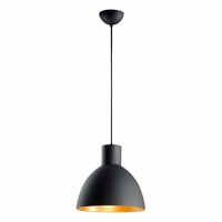 "Maxim Cora 1-Light 14"" Pendant 11024"