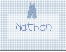 Blue Gingham Clothesline Note Card