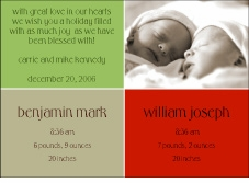 Darling Divide Twins Holiday Birth Announcement