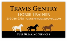 Horse Care Business Cards