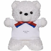 Time Travel Academy Toy Teddy Bear