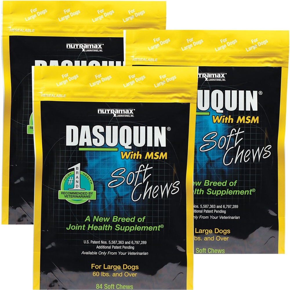 Dasuquin With Msm Soft Chews For Large Dogs