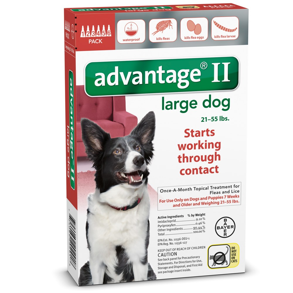 6 month advantage ii flea control large dog for dogs 21 55 lbs 3