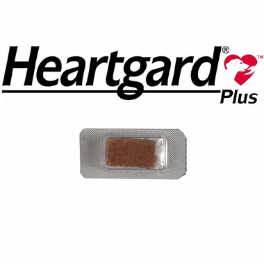 Heartgard PLUS for Dogs 51100 Lbs 1 CHEWS