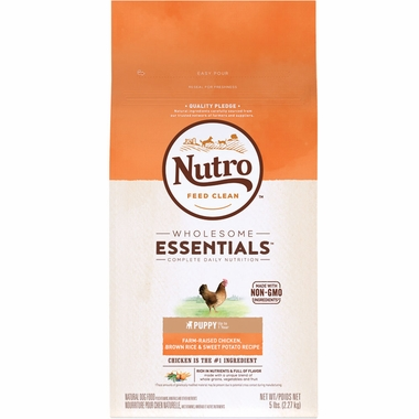 Nutro Dog Treats Review
