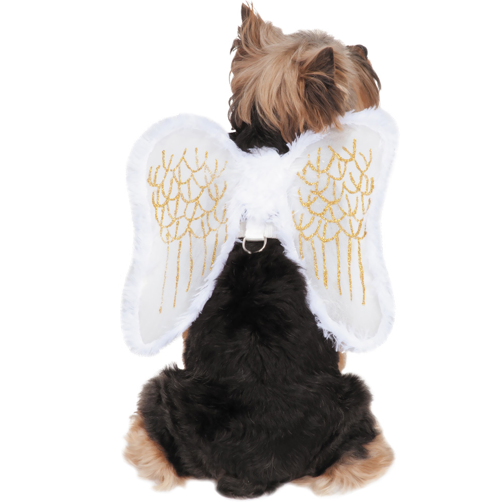 Zack & Zoey Angel Wings Harness Dog Costume - Small UM677412