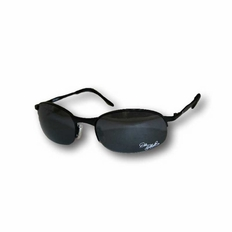"""3"""" Dale Earnhardt Collectable Sunglasses #72218"""