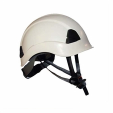 Arborist Helmet & Accessories