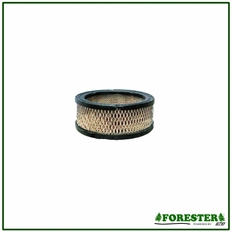 Forester Replacement Briggs & Stratton Air Filter - 392642
