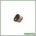 Forester Replacement Briggs & Stratton Air Filter - 690610