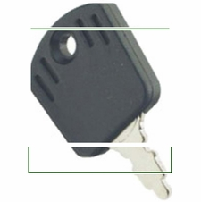 Forester Replacement Key - AYP/Briggs & Stratton