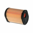 Forester Replacement Tecumseh Air Filter - 36905