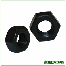 Hex Nuts #215871