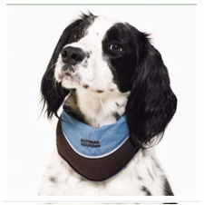 Kyjen Outward Hound Designer Cool-It Bandana
