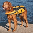 Outward Hound Orange Dog Life Jacket