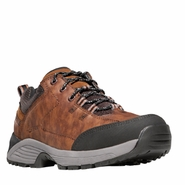 Danner 31014 Cloud Cap Low Brown Hiking Boot