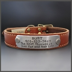 Custom Leather Dog Collars & Dog Tags
