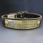 Personalized Leather Dog Collar - Custom Puppy Plate