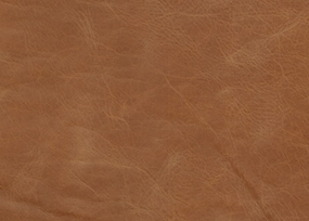 Leather-Wild West-Creek Bed