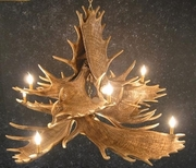 Bring Nature Inside with Animal Lighting
