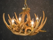 Caring for your Antler Chandelier