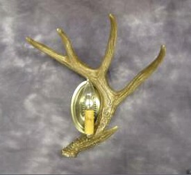 Whitetail Single Antler Wall Sconce