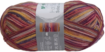 100g GERMAN Silky Self Striping SuperWash SOCK Yarn Salsa Grundl 07