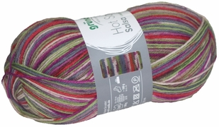 100g GERMAN Silky Self Striping SuperWash SOCK Yarn Salsa Grundl 08