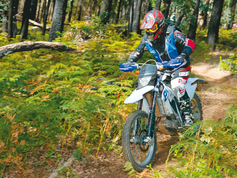 "<b><font color=""black""><font size=""4"">150cc to 250cc Dirt Bikes</font></font></b>"