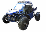 BMS 800cc V-Twin  Water Cooled Dune Buggy