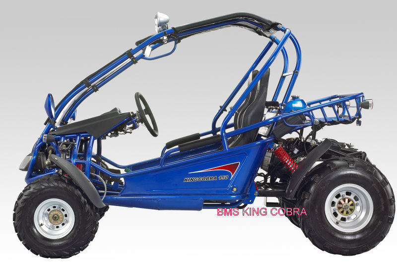 Bms king cobra 150 dune buggy go kart for Motor go kart for sale