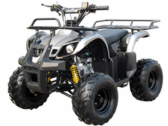 FLEETWOOD 125cc  In stock  16 inch tires ATV J012