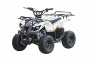Kymoto ATV 110D Sport /Utility TrailMax Quad- Front & Rear Racks!