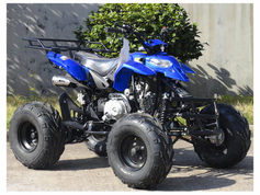 "Fleetwood TS 125cc  Sport Model Ultra Quad - Fully Automatic - Upgraded Suspension - 19"" Tires - Hydraulic Disc Brakes"