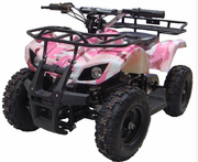 Kicker Fully Electric ATV / Quad  - Sport-Utility Style - with Reverse - 350 Watts / 24 Volts